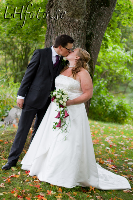 Bröllop 2010-09-18