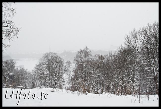 Stockholm från Skansen